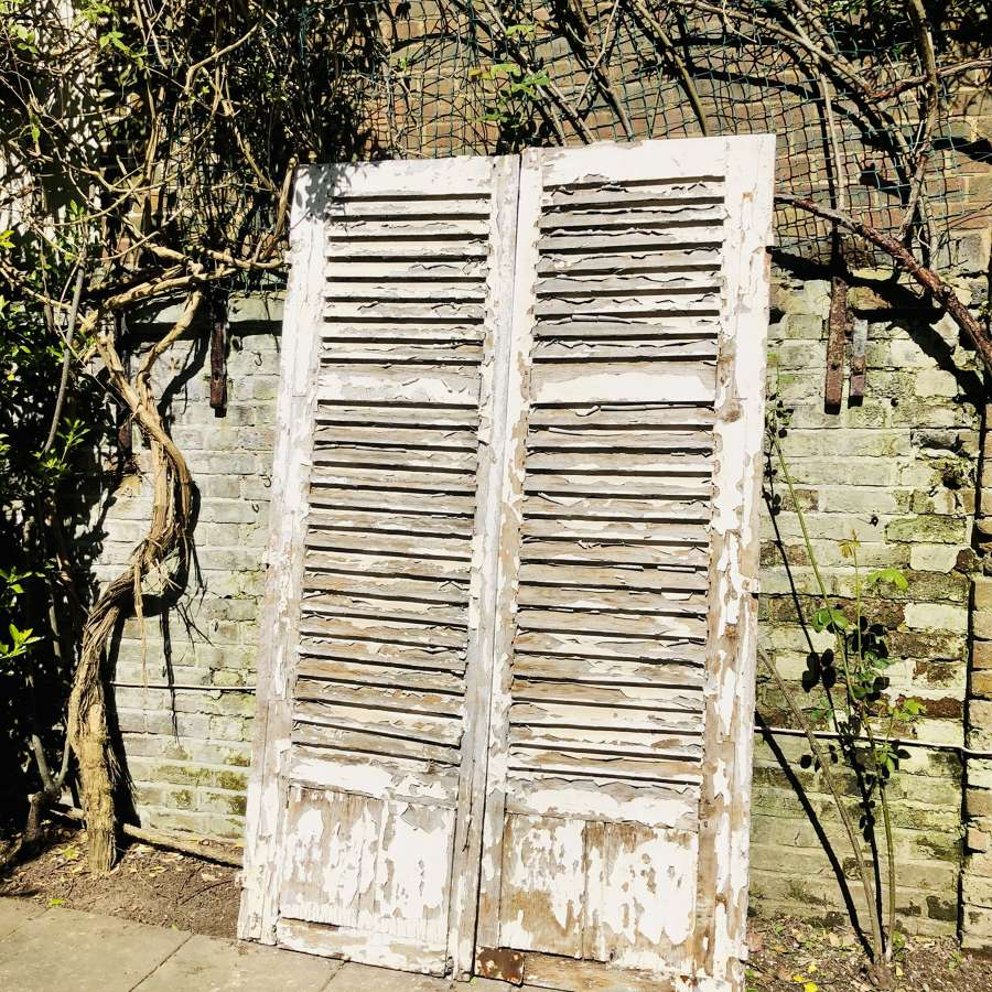 Vintage French oak shutters