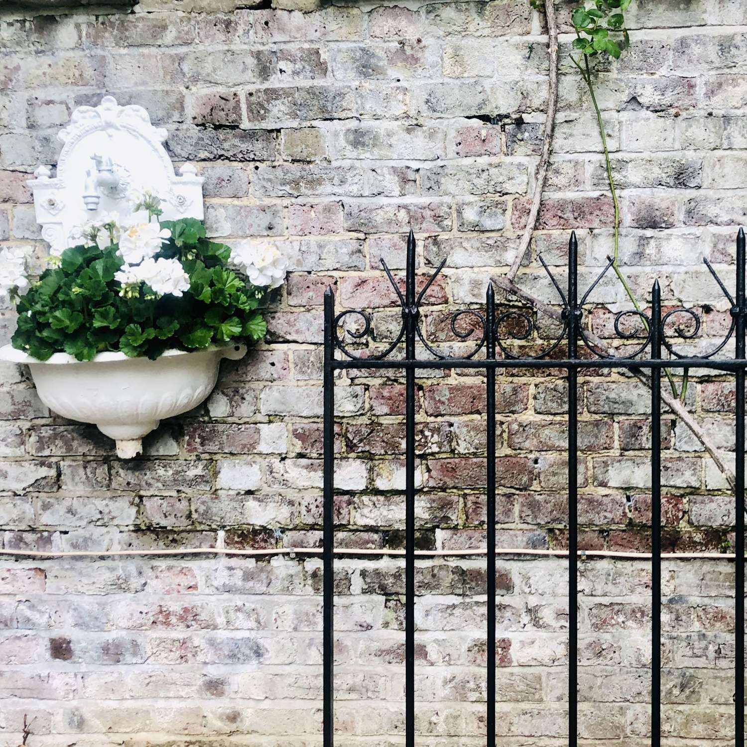 19th century French antique cast iron garden gate