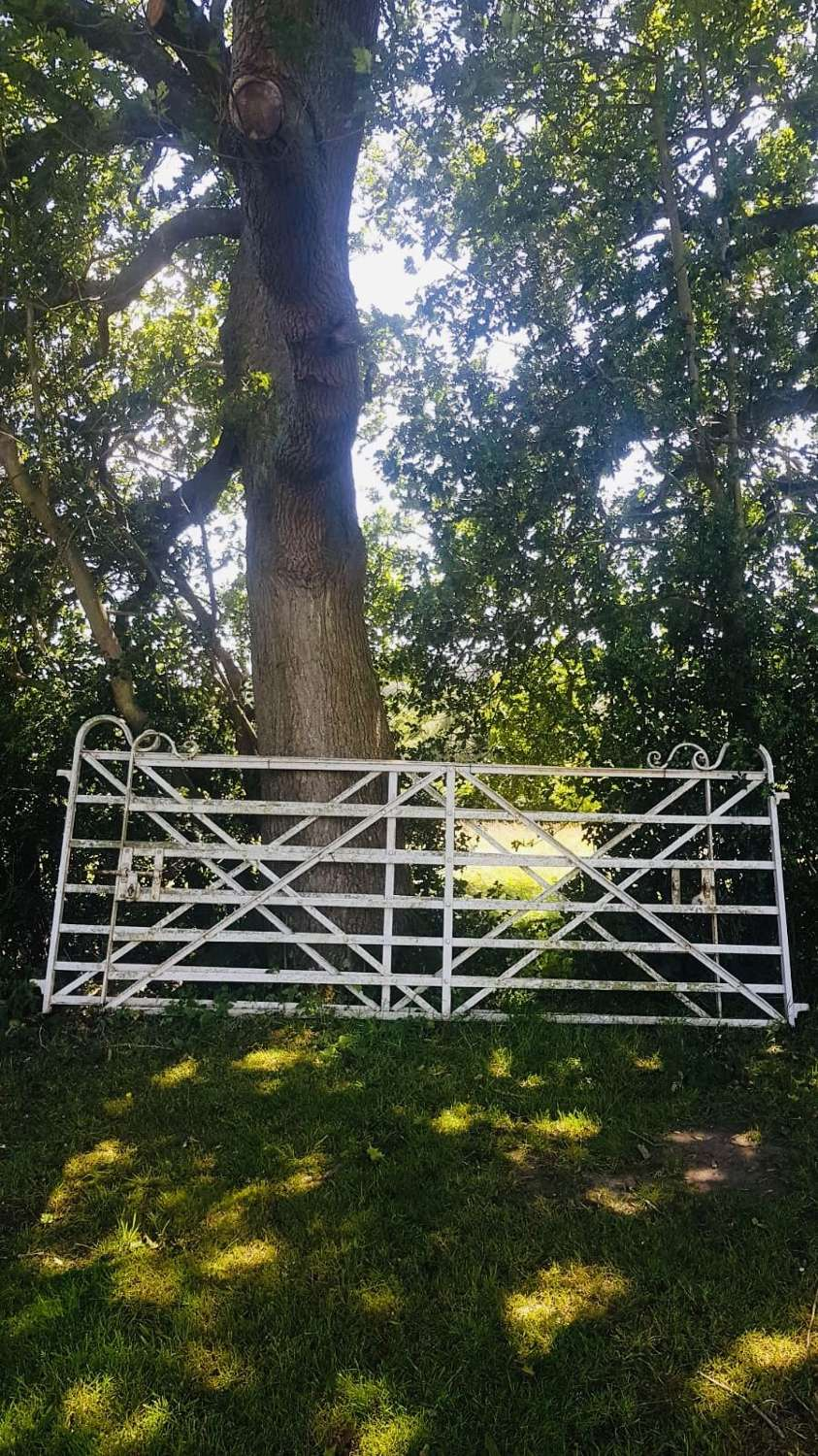 18th century wrought iron manor house estate gates