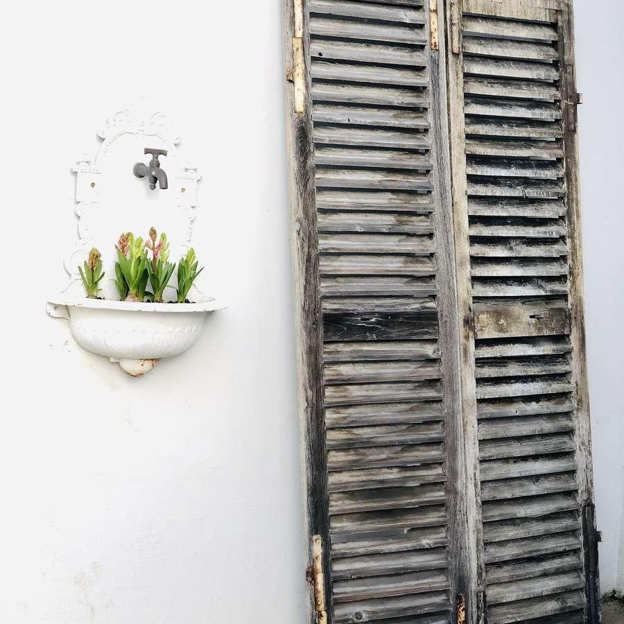 Antique French oak shutters
