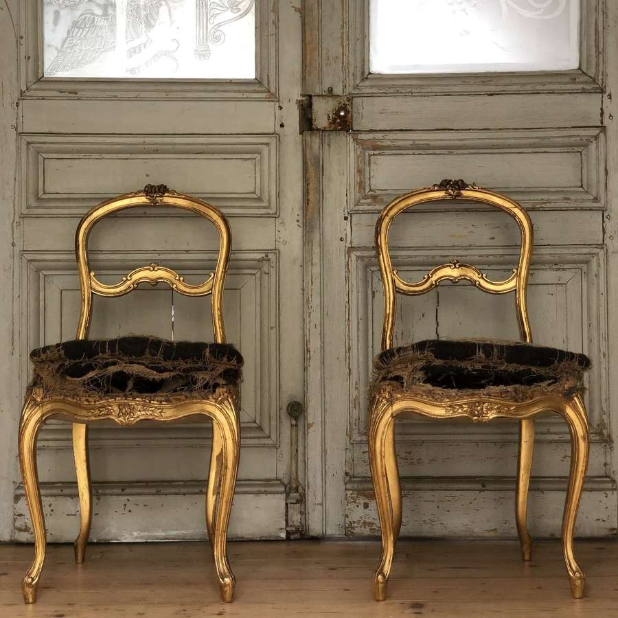 Antique French Louis XVI gilt chairs