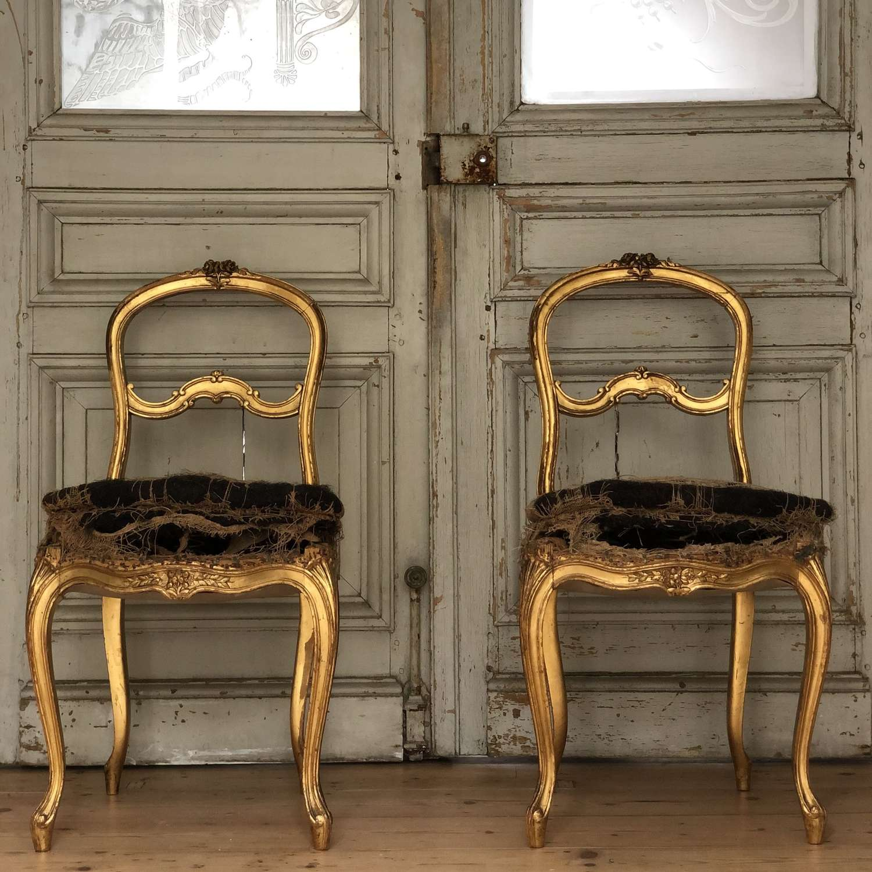 Antique French Louis XVI gilt chairs
